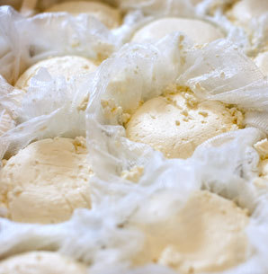Ptreyes_tour_category
