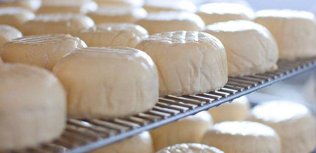 Normalized_fresh_cheese_racks
